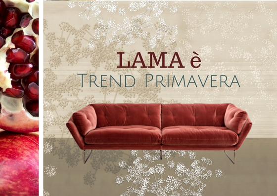 LAMA | Lama è Trend Primavera!